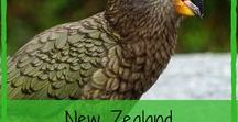New Zealand Affiliate Programs / Directory of New Zealand Afiliate Programmes | Make Money Online | Affiliate Marketing | Writing For Cash | https://writingforcash.com/affiliate-programme-nz-directory