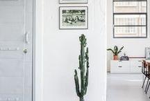 Home decor / Home decor ideas, tips, DIY, contemporary home decoration, apartment ideas, modern, cozy homes, bohemian styles, boho homes, dream beach houses, natural interior, minimalistic