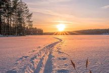 Winter landscapes / The beauty of the winter