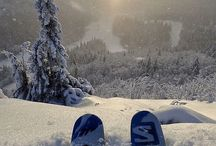 Skiing - womens skis and apparel / The collection of the skis and apparel. Find yours!