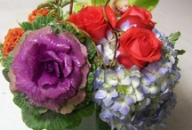 Striking Arrangments  / These beautiful arrangments make a great gift for someone special! Or purchase one for your own home!  Call Grace Lakes Florist today at 239- 262-6536.