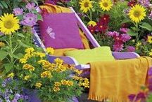 Garden {Grow}
