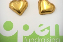 Open Fundraising / by Paul de Gregorio