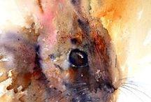 Watercolour Animal and Bird Paintings / Watercolour paintings of animals and birds (watercolor)