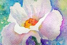 Watercolour flower paintings / Paintings of flowers in watercolour (watercolor)