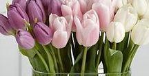 Inspirações: Flores e Arranjos / Inspirações para festas