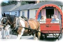 Land of the Horse - Ireland