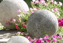 Garden / Ideas to grow things / by Jennifer Condrey