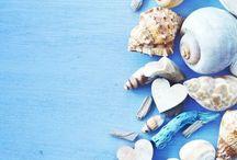 Wallpaper Shells