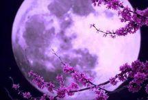 Luna/Stelle
