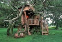 Tree Houses & Other Cool Abodes / Who wouldn't want to live here?!