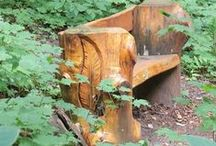 Tree Stumps / Just because a tree is cut down, it doesn't mean there isn't any further value. A tree stump's use is only limited by your imagination.