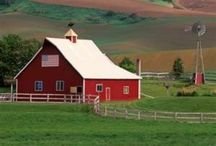 Green Acres / by Brittany Cooper