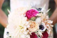 weddings / by jayme marie henderson | holly & flora