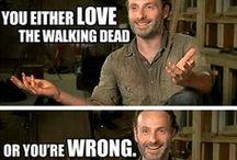 The Walking Dead / Love The Walking Dead! Can not wait for season 3!!! / by Lauren Emerson