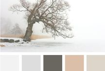 Colour / by Tracy Fenn