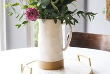 Plants + Gardening / Ideas, tips, and tricks for gardening and plants in the home. Beautiful decorations, DIY ideas for planters, and easy and cheap ways to display plants in your home and garden.