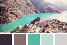 Color Schemes / by Meg Roche
