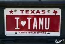 Gig 'Em / Texas A&M University / by Jessica McBride
