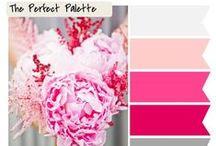 color palettes  / by Fabulous DSC