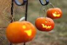 Halloweenie! / by kidecals