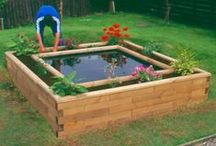 Garden | Aquaponics / Great ideas for growing plants and fish.
