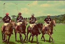 Para-Polo / Pictures from the world's first EVER #parapolo match at Tidworth Polo Club. Thanks to Best of British Polo for organising the event and our key sponsors Hattingley Valley, Pubs on Wheels, Strutt and Parker and Weatherbys Hamilton. Special thanks to Wilsons Law and Winterflood Securities for sponsoring the team! Read more about the event here:http://www.helpforheroes.org.uk/news/posts/2014/june/injured-heroes-saddle-up-for-worlds-first-para-polo-match/