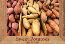 GF Sweet Potato Recipes / gluten-free recipes with sweet potatoes / by Heather