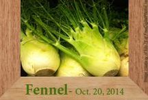 Gluten-Free Fennel Recipes / by Heather