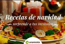 Recetas de Navidad en español / Encuentra las mejores recetas de Navidad en español para lucirte estas fiestas y dejar a tus invitados con la boca abierta. Aprende a cocinar aperitivos, carnes, mariscos, pescados y postres típicos de Navidad para preparar tu cena o comida navideña perfecta.