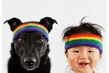 Kids & Dogs / Dogs and children can be great friends and having a dog can help children develop kindness, understanding and respect for living things.