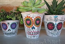 Skulls / by Stephanie Carroll