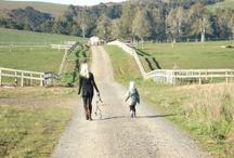 Farm Life! / www.southernsecretscarolinastyle.com / by SouthernSecrets CarolinaStyle