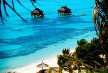 Beaches / Best beach vacation ideas and island getaways, including Hawaii, the Caribbean, Bahamas, Barbados, Bali, Bora Bora, Tahiti, French Polynesia, Florida, Europe and more. Please post pins related to beaches only. Spammers will be blocked right away. Please limit your pinning to 10 pins per day. Thank you for contributing to the Beaches board... / by Vacation Ideas