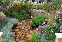 Gardens & Botanicals / Landscaping, planting, arborist's & more