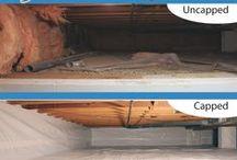 Basements & Crawl Spaces