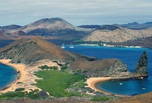 Galapagos Islands / Take a cruise to explore the beautiful Galapagos Islands and see the most colourful and diverse creatures in this exotic paradise.