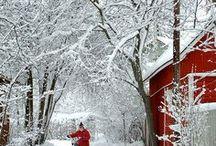 Winter Love! / by Rhonda Hall, REALTOR