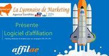 Le Marketing d'Affiliation / PigmaLyon Marketing présente sa solution partenaire d'affiliation _ Tracking,Attribution & Analytics pour vos campagnesCPA, CPL,CPC