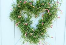 Home: Wreaths / DIY Wreaths for all seasons for the home! / by Oh My! Creative