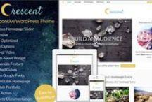 WordPress / WordPress themes and design