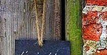 Tuin; tips & trucs / alles wat leuk is voor de tuin