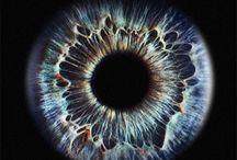 ・eyes ・ 眼