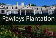 Pawleys Plantation