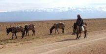 Destination Morocco / Morocco