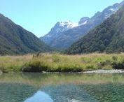 My New Zealand / New Zealand