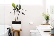 Bathroom / Bathroom Ideas and Inspiration + Bathroom Decor | Small Bathroom Ideas | Bathroom Tiles | Bathroom Storage | Bathroom White | Bathroom Wallpaper | Bathroom Design | Bathroom Decor Small | Bathroom Design Ideas | Bathroom Layout | Bathroom Color Schemes.