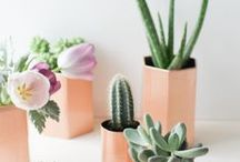craft / Craft and DIY ideas  / by ~ S A S H A ~