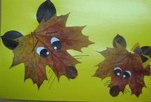 Kindergarten - Fall / by Caitlin Gullickson