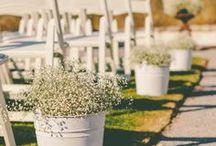 Wedding / by Linda Corscadden Houser